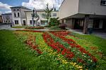 Květinová výzdoba ve Frýdku-Místku.