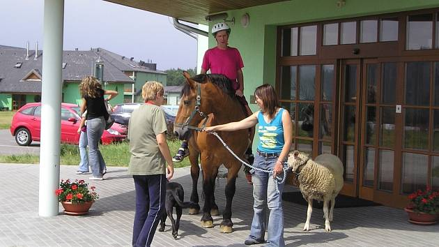 Manželé Špalovi se svými mazlíčky.
