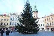 Na náměstí Svobody v Místku stojí vánoční strom.