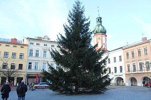 Vánoční strom v Místku už stojí