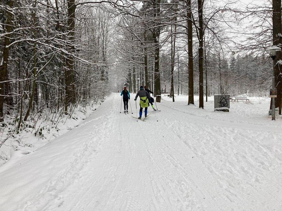Běžecká stopa v třineckém lesoparku.