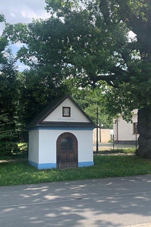 Deník na návštěvě v Raškovicích.