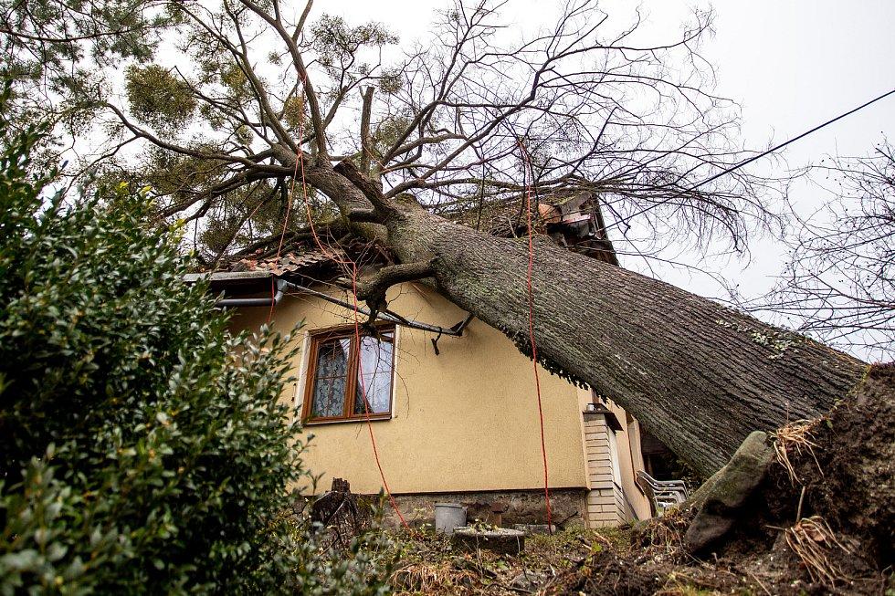 Silný vítr zlomil strom, který spadl na střechu rodinného domu, 10. února 2020 v Morávce.