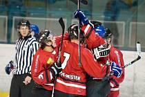 Hokejisté Frýdku-Místku dokázali v přípravném duelu s Bobry zvítězit rozdílem tří branek. Ilustrační foto.