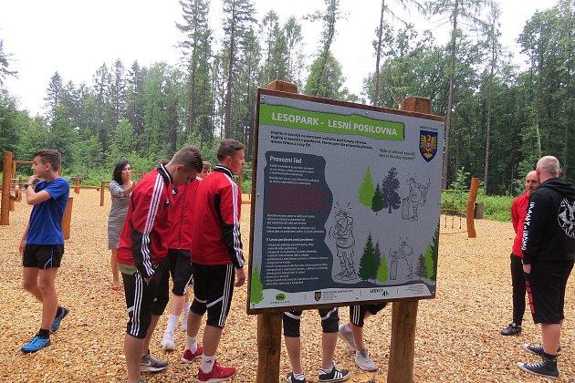 Třinecký lesopark - Ilustrační foto.