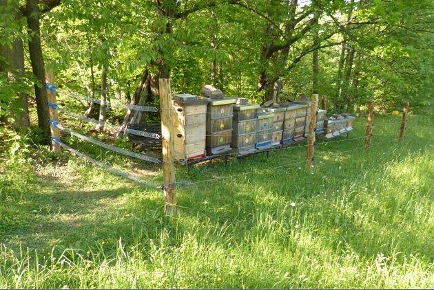Zabezpečené stanoviště včelstev jednoho zchovatelů včel vBeskydech.