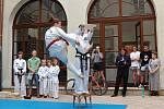 Výstavu mapující sto let sportu na Frýdecko-Místecku uspořádalo Muzeum Beskyd z Frýdku-Místku.