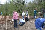Třinečtí školáci při sázení stromů.
