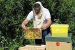 Novým domovem pro včely je rekultivovaná část skládky v Třinci.