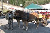 V Palkovicích se v sobotu 4. dubna konal už pátý ročník vozatajské jízdy.