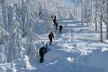 Již podruhé se koná nejtěžší zimní závod v České republice Adidas 24 hodin na Lysé hoře.