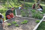 Školní zahrada. Ilustrační snímek.