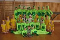 Mladé gymnastky z 11. ZŠ ve Frýdku-Místku sbíraly úspěchy.