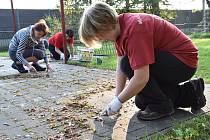 Dobrovolníci v Třinci například vyčistili dětské hřiště. Celá akce už má tradici, někteří se účastní opakovaně.