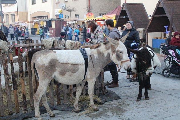 Součástí vánočního trhu bylo ve Frýdlantu nad Ostravicí i rozsvěcování vánočního stromu.