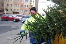 Svoz vánočních stromků v Třinci.