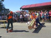 V neděli 30. července se ve Vendryni uskutečnil již sedmý ročník mezinárodní soutěže Slezský dřevorubec.