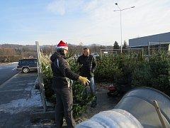 Vánoční stromky si mohou lidé pořídit také na několika místech v Třinci. Jedním z nich je parkoviště v lokalitě za železniční tratí v Lyžbicích.