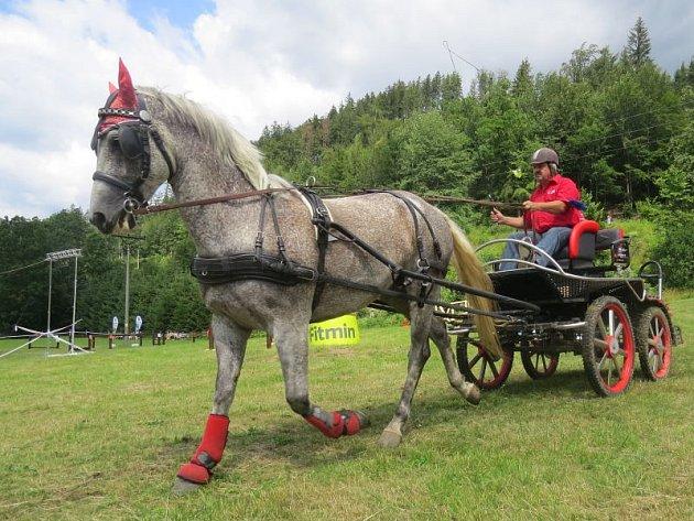 U Lomňanského muzea se konal šestý ročník Vozatajských závodů, kterého se zúčastnili jak závodníci z Česka, tak ze zahraničí.