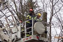Jablunkovští dobrovolníci hasiči pomáhají prací se stromy ušetřit radnici peníze.