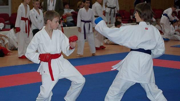 Druhý ročník Aminostar karate cupu v Bystřici nad Olší.