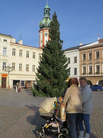 Vánoční strom ve Frýdku-Místku.