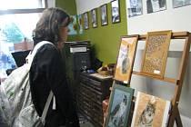 Nová galerie s názvem Gallová Gallery-Art Shop se otevřela v pátek 19. října v sedmnáct hodin na Farní ulici ve Frýdku-Místku.