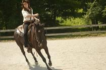 Při jednom z westernových závodů si Nela Walachová  užívá v sedle koně jménem Richenza.