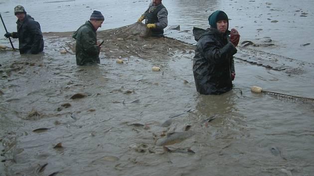 Tradiční výlov frýdecko-místeckého rybníka Arnošt provázelo o víkendu mimořádně chladné počasí.
