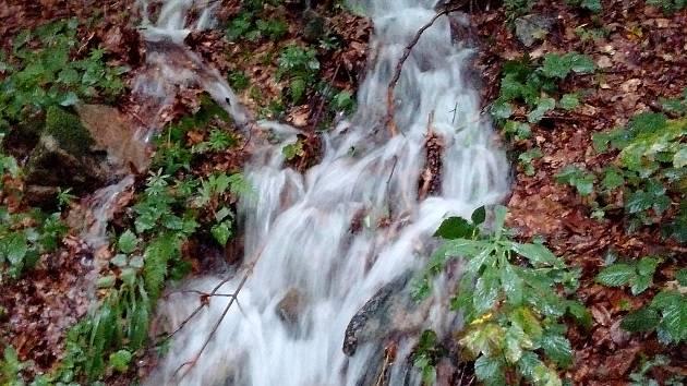 Voda z Lysé hory, to je základ už přibližně sedmi desítek různých  produktů pocházejících z Beskydského pivovárku v obci Ostravice.