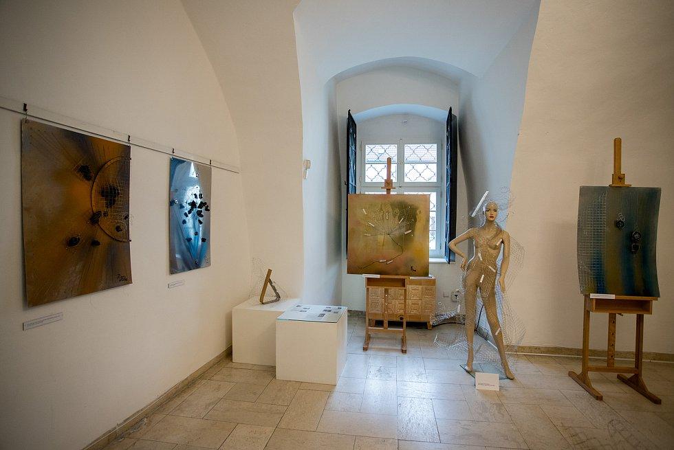 """Výstava od Petry Venclíkové a """"Symfonie odpočinku"""" v Muzeum Beskyd, 24. července 2020 ve Frýdku-Místku."""