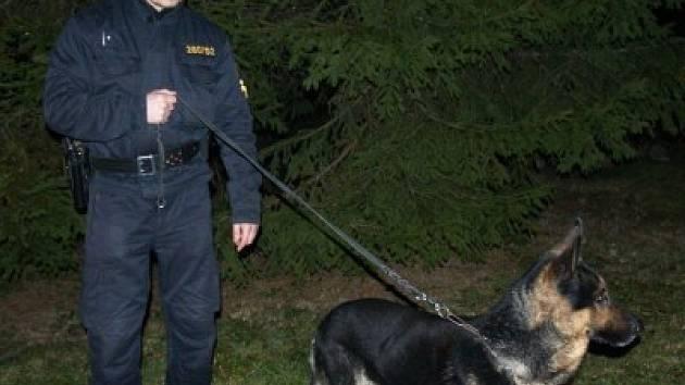 Teddy s psovodem Jaroslavem Holubem.