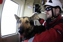 Německý ovčák Spajk má výjimečné schopnosti. Jako jediný služební pes v České republice už získal tři atesty. Pomáhá nejen frýdecko-místeckým strážníkům.