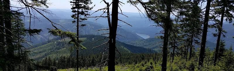 Již několik let mohou turisté v podhůří Lysé hory a Smrku narazit na symbol barevné hlavy medvídka. Jsou jím značeny stezkyPo medvědích tlapkách, které vedou po loukách, lesích a vesnicemi v oblasti Ostravice, Malenovic, Čeladné a Nové Vsi.