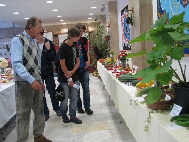 Výstava ovoce, zeleniny a rostlin v budově 6. základní školy ve Frýdku-Místku.