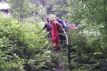 Záchrana zraněného dřevorubce.