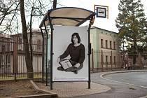Jedna z autobusových zastávek v Třinci, které se od konce ledna proměnily ve výstavní plochy.