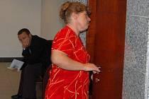 Jediná dostupná fotografie Dany Bartulcové. Žena čelí obžalobě z rozsáhlých majetkových zločinů, v roce 2008 však zmizela a dlouho ji hledali policisté.