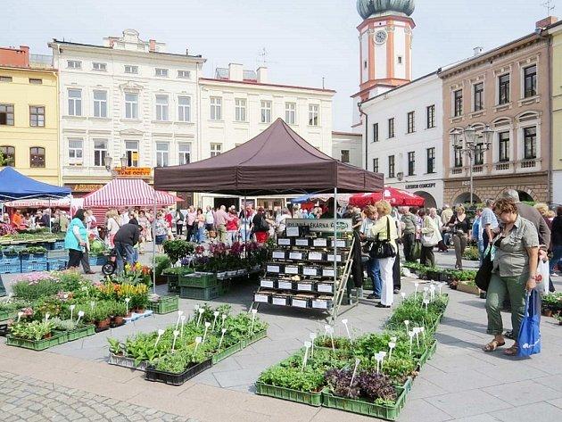 Náměstí Svobody se ve čtvrtek zazelenalo sazenicemi a květinami.