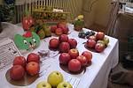 Výstava zahrádkářů ve Frýdku-Místku zaměřená na staré odrůdy v regionu.