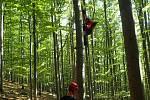 Záchrana paraglidisty z buku v Krásné.