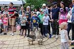 Stovky dětí i dospělých navštívily v sobotu 27. května Smetanovy sady v Místku a přilehlou Novou scénu Vlast. Uskutečnily se tam oslavy Dne dětí.