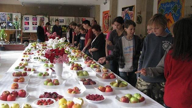 Zahrádkáři z Frýdku-Místku zahájili ve středu 23. září výstavu květin, ovoce a zeleniny v budově 6. ZŠ v Místku, kde expozici můžete navštívit do pátku 25. září.