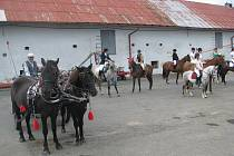 Tradiční dožínky v areálu zámku v Horních Tošanovicích