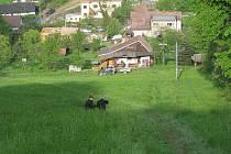 U sjezdovky ve frýdecko-místecké části Chlebovice se v pátek odpoledne utrhla zemina. Oblast 100 krát 200 metrů zde ujela o patnáct metrů.
