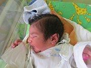 Roslin Abdullah, Frýdek-Místek, nar. 6.9., 50 cm, 3,28 kg, Nemocnice Frýdek-Místek.