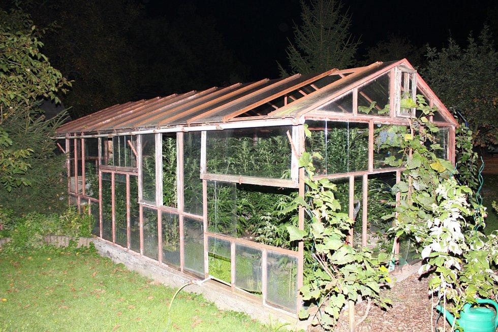 Šestičlennou skupinu, která pěstovala marihuanu, odhalili třinečtí kriminalisté.
