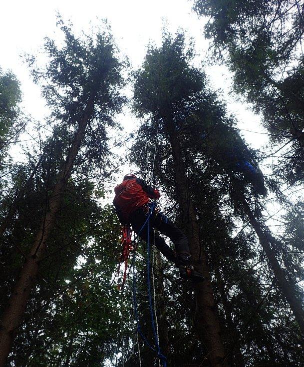 Hasiči šplhali pro paraglidistu do desetimetrové výšky.