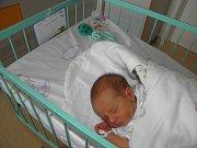 Davídek se narodil 9. dubna v Nemocnici s poliklinikou v Karviné-Ráji mamince Mariole Studnické z Třince. Porodní váha miminka byla 2720 g a míra 48 cm.