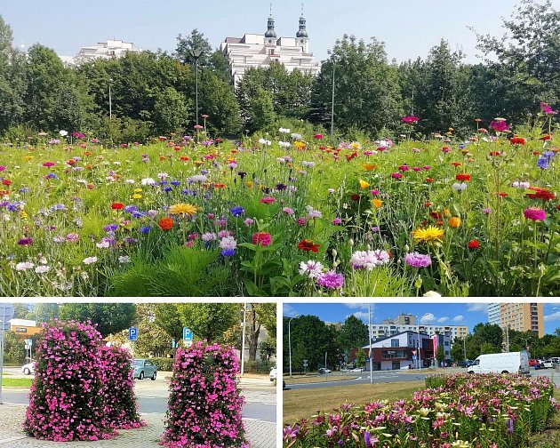 Frýdek-Místek je městem květin.